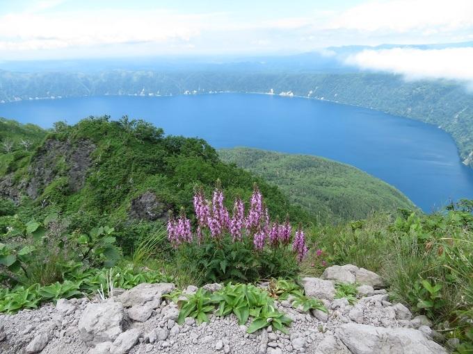 摩周岳とヨツバシオガマ