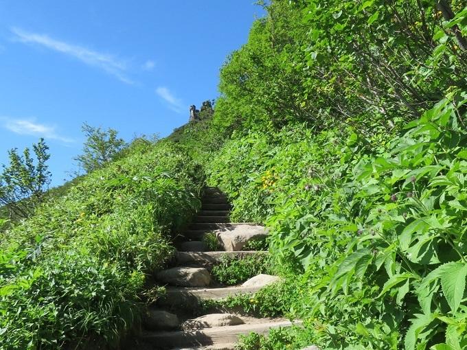 登山道 (2)