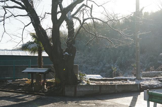 長沼の堂、雪の朝