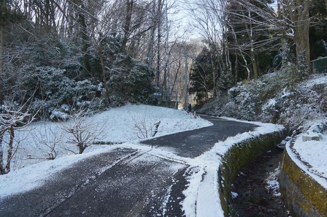 長沼の道、雪をかぶって