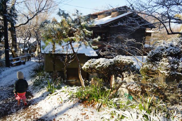雪をかぶった鳥山