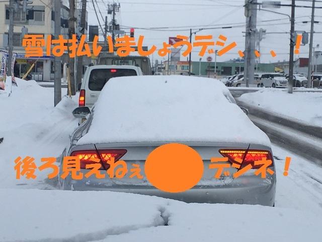 IMG_7507_PPP.jpg