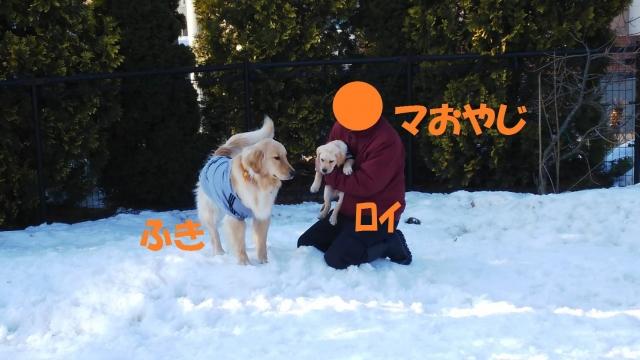 IMG_757676.jpg