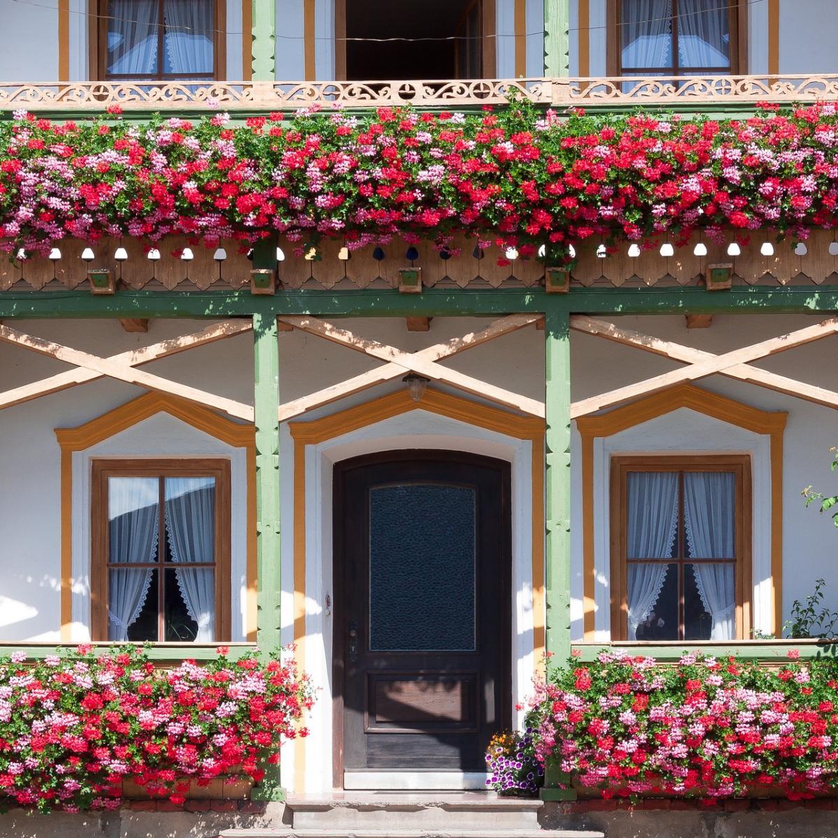 ヨーロッパの窓辺に飾られるゼラニウム