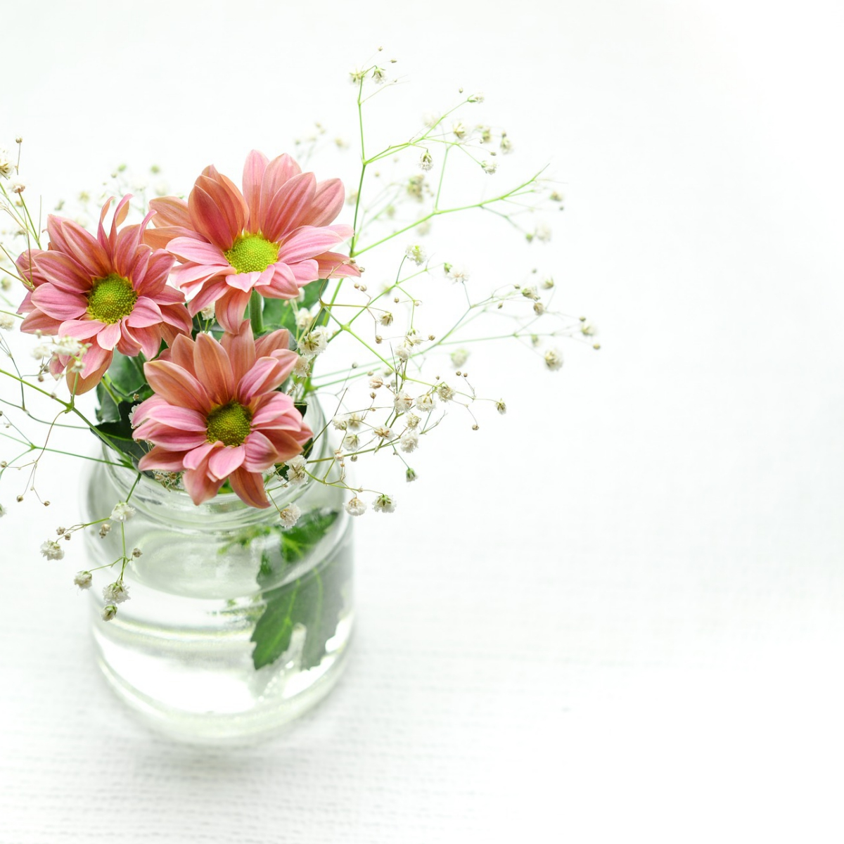 pink-2609210_1920.jpg