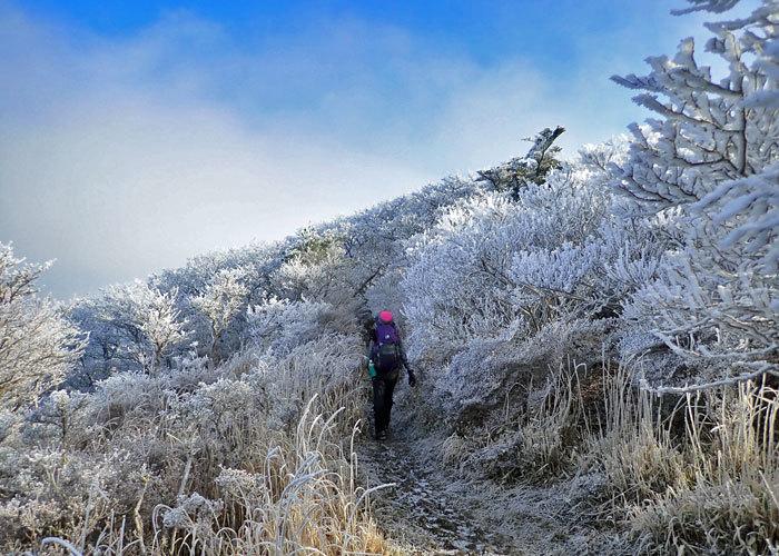 2019,2,2韓国岳・高千穂峰-7
