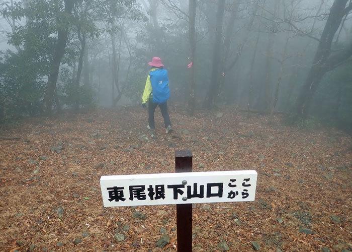 2019,2,3紫尾山-20