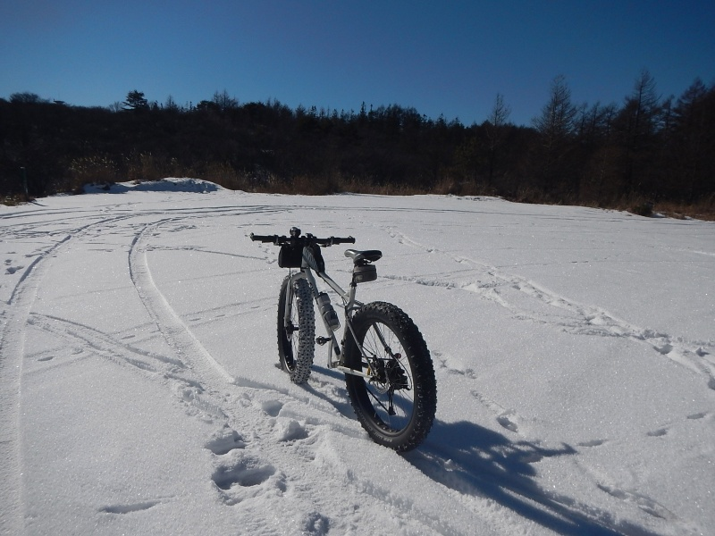 Pugsley snow ride