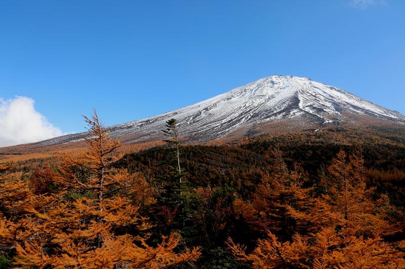 富士山2181026