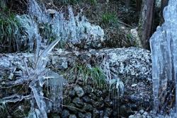氷の芸術5