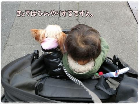 散歩事情②