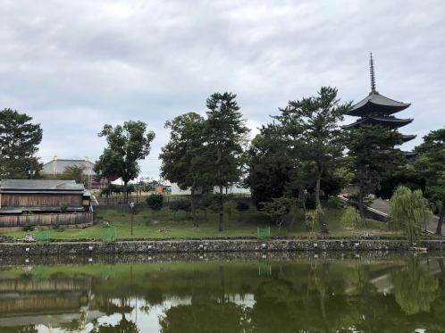 181012sarusawa.jpg