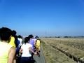 鴻巣パンジーマラソン10
