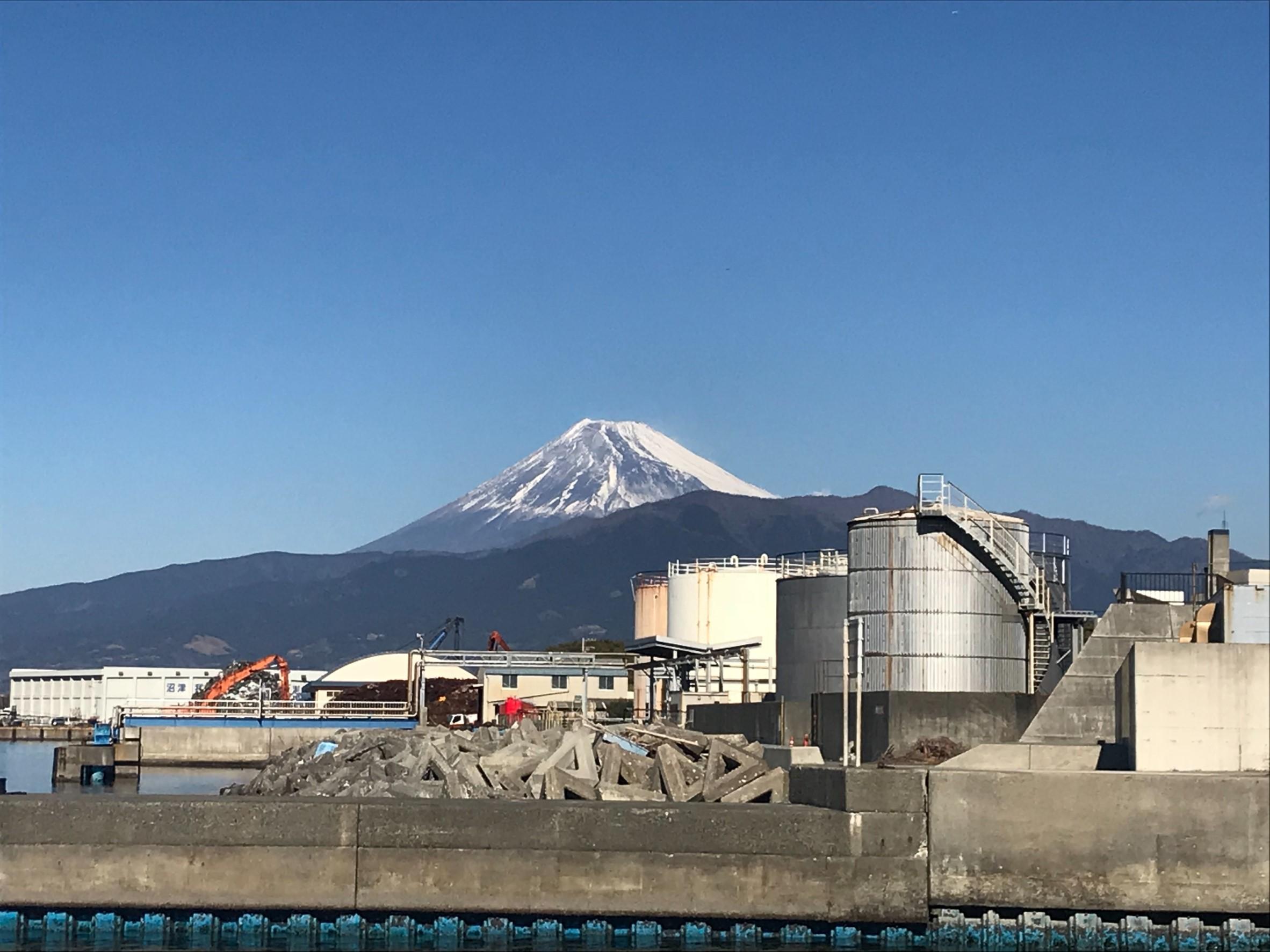 初春の研修旅行で見事な富士山に縁起良し!