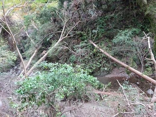 箕面台風2