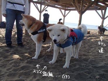 稲毛浜24