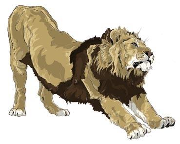 ライオンのび〜