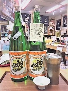 20190111神亀Orange