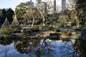 Tokyo Park Scene in Winter