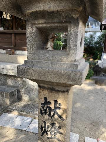 三輪神社うさぎ⑦
