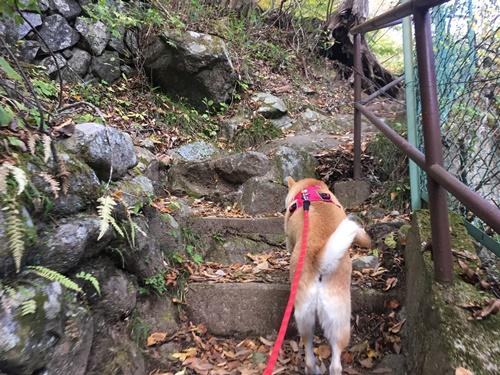 日川渓谷竜門峡7
