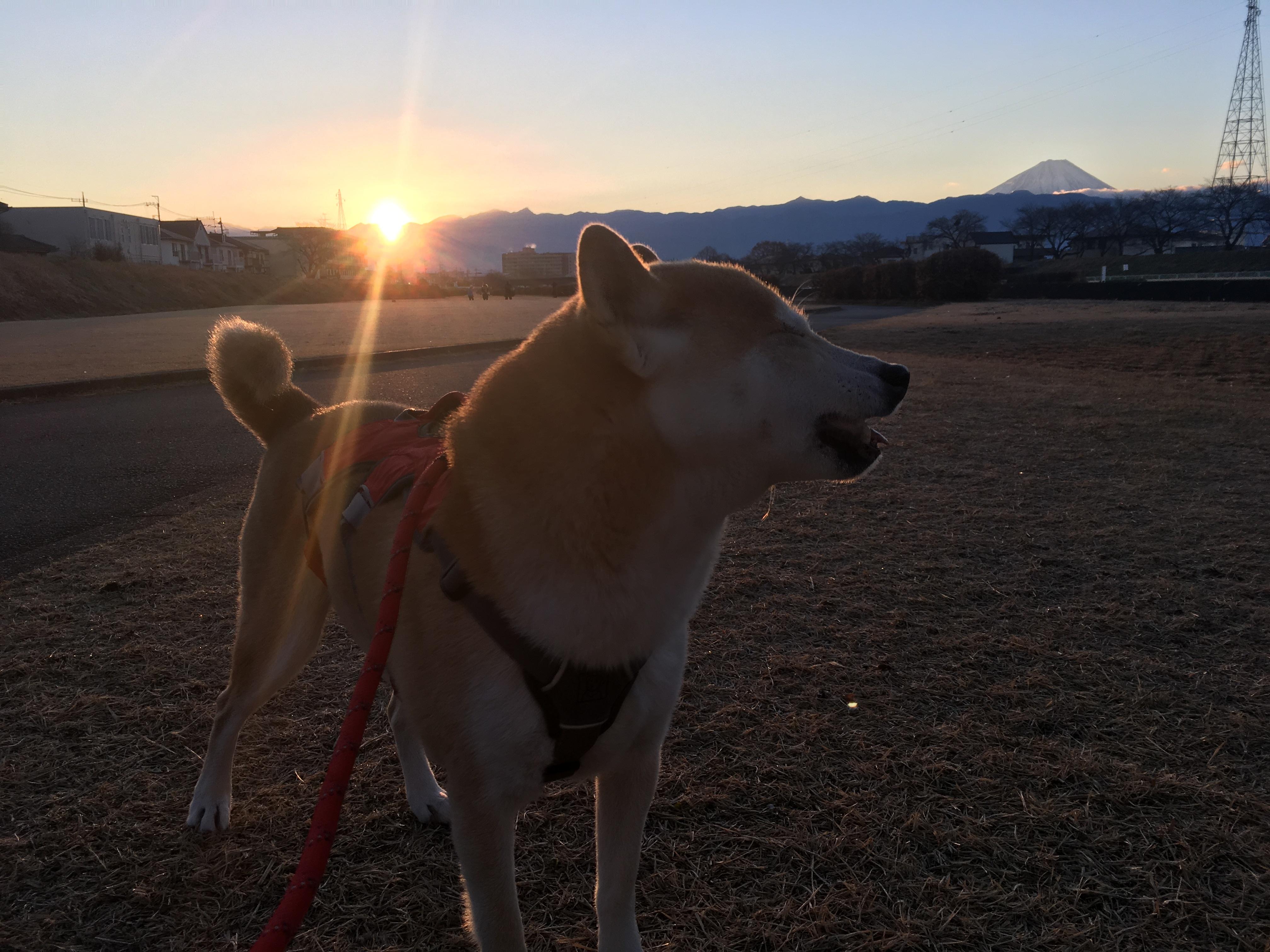 2019年 初日の出と里山散歩
