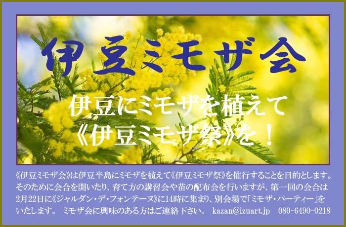 mimosaparty2.jpg