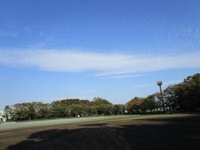 blog7032.jpg