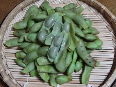 湯掻いた枝豆