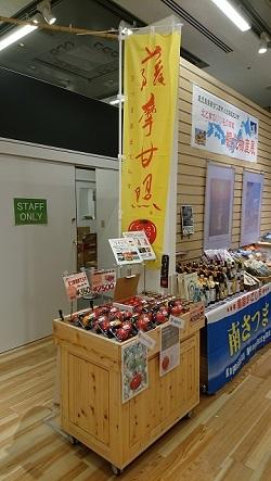 東京都庁20190208-4