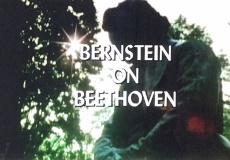 Bernstein On Beethoven A Celebration In Vienna