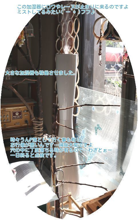 ⑤大きな加湿器