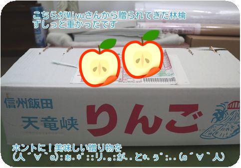 ④信州の林檎