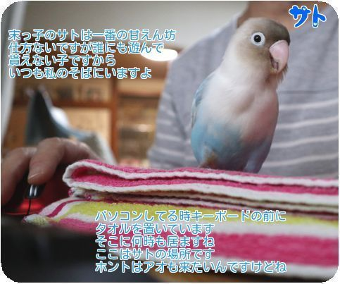 ①サト甘えん坊
