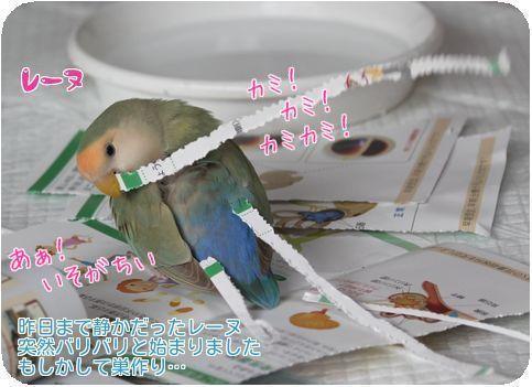 ①レーヌの紙切り