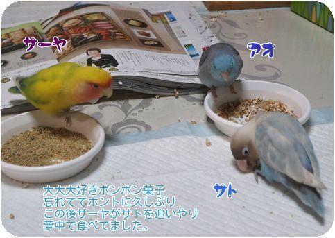 ②ポンポン菓子
