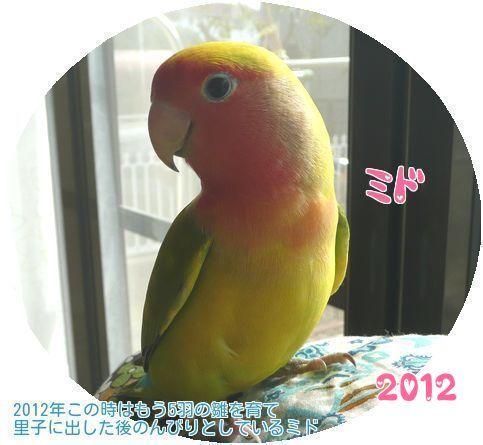 ②2012年