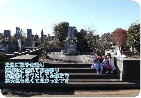 ②孫も一緒の墓参り