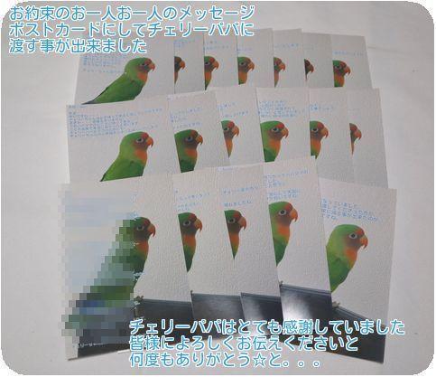①ポストカード