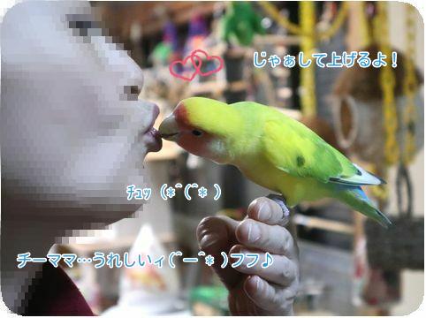 ②チーママとサーヤ2