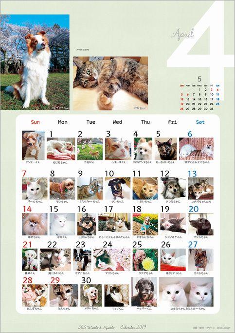 2019_365wankonyanko_calendarh4sk4.jpg