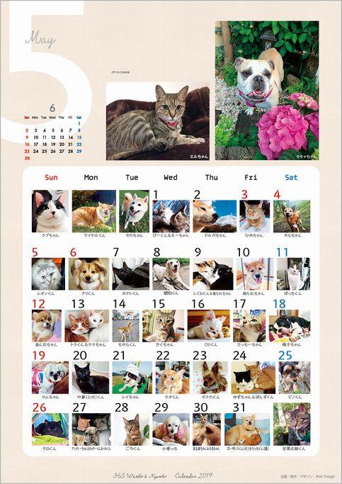 2019_365wankonyanko_calendarh5-sk.jpg