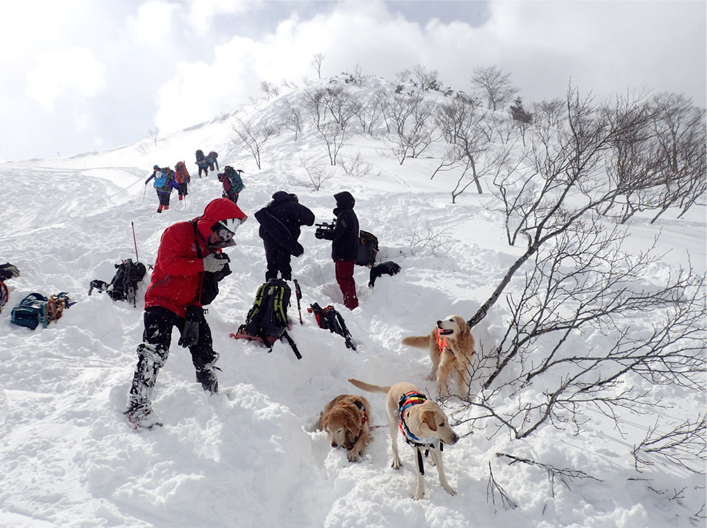 関東雪崩講習会 2019 (14)