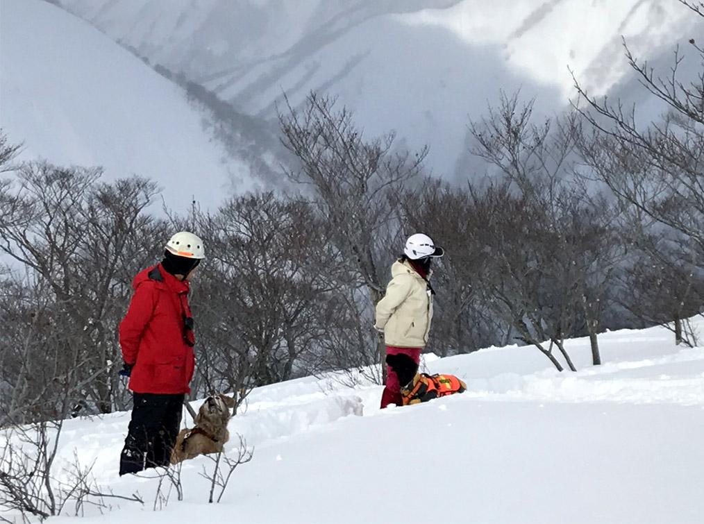 関東雪崩講習会 2019 (23)
