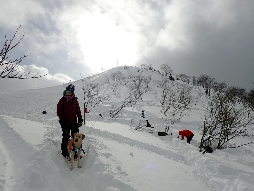 関東雪崩講習会 2019 (28)
