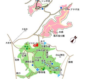 yokoyama1.png