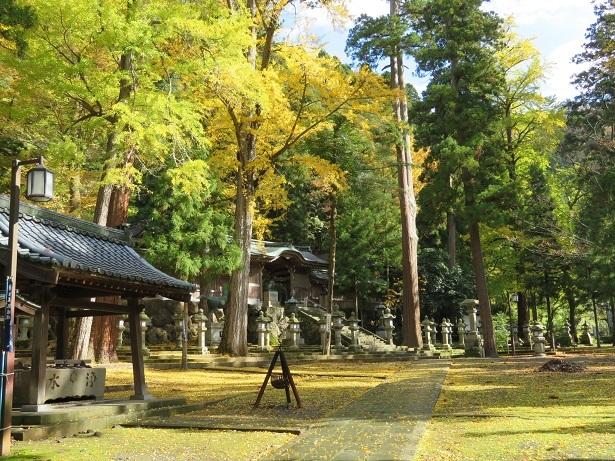 大瀧神社 境内の紅葉