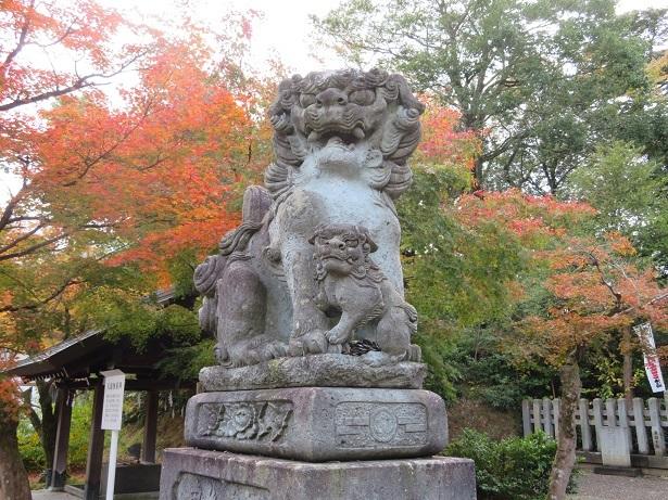 足羽神社狛犬