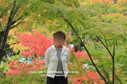 isuobarih-10296351.jpg