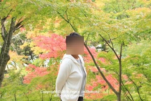 isuobarih-10296357.jpg